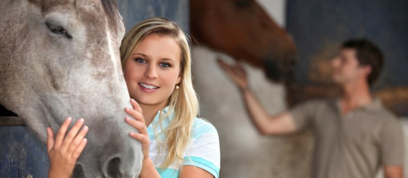 Pferdehaftpflichtversicherung